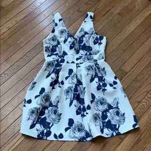 Blue & Gray Roses Sleeveless V-Neck Dress